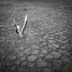 """Clamor"" de Aldo Luján Zanetti. Obra ganadora del primer premio."